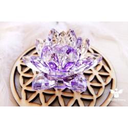 Feng Shui lotos (transformace, čistota)