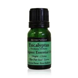 Eukalyptus BIO Esence Olej 10 ml